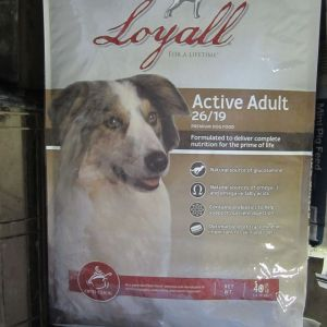 Loyall Active Adult Dog 26-19