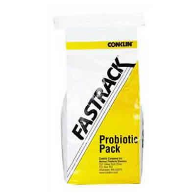 fastrack-bag
