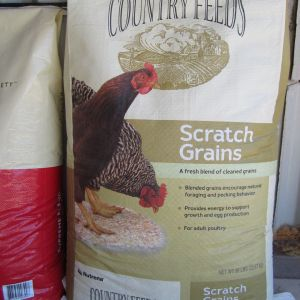 Country feed Scratch Grains