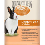 country feeds rabbit