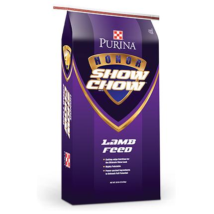 lamb-show-chow