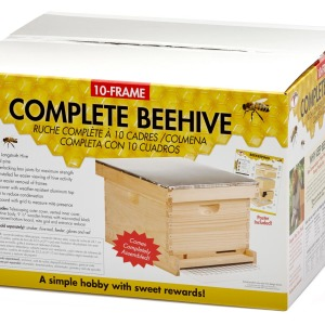 Complete-Beehive